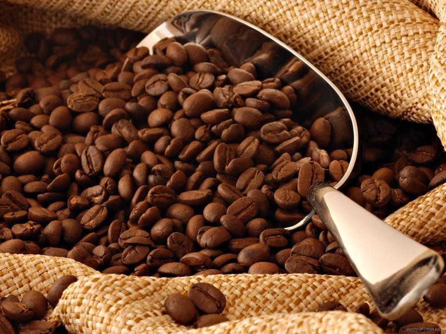 Картинки по запросу кавові зерна