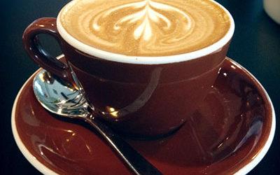 Кава чорний дрізд