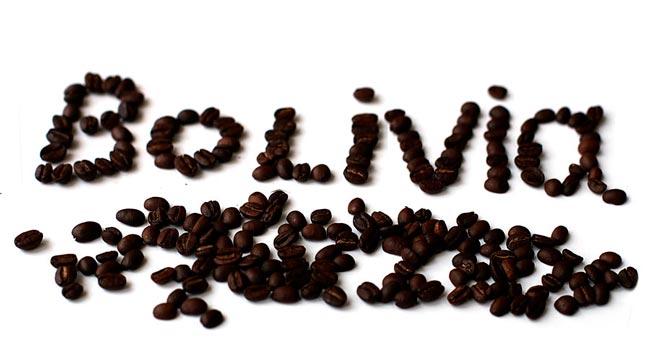 Кава з Болівії: гармонія смаку і аромату для досконалого напою
